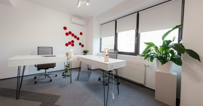office.spatiograf_vicentiul.ro-15-531
