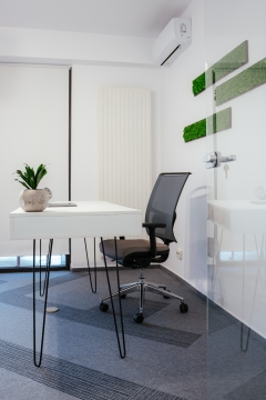 office.spatiograf_vicentiul.ro-47-467